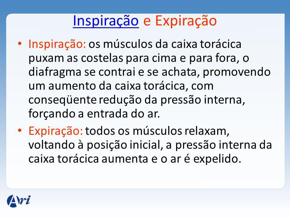 Inspiração e Expiração
