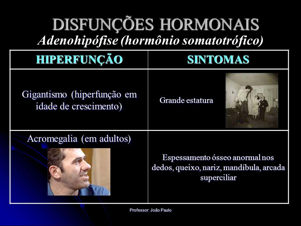 Adenohipófise (hormônio somatotrófico)