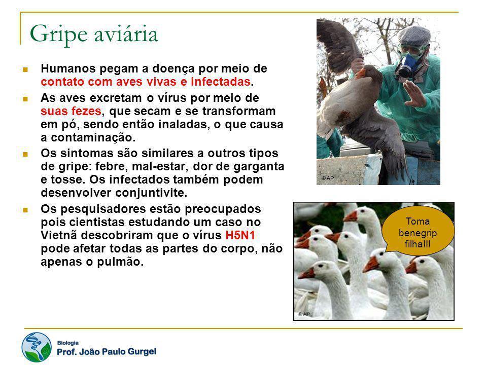 Gripe aviária Humanos pegam a doença por meio de contato com aves vivas e infectadas.