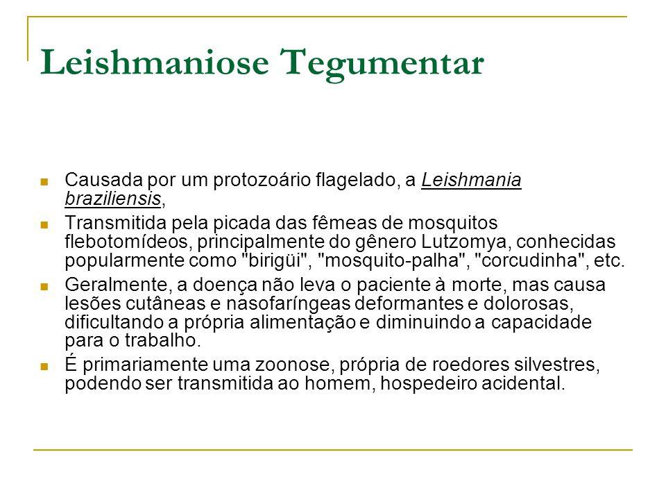 Leishmaniose Tegumentar