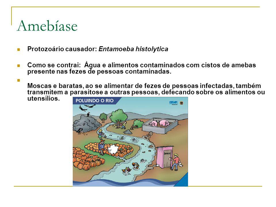 Amebíase Protozoário causador: Entamoeba histolytica