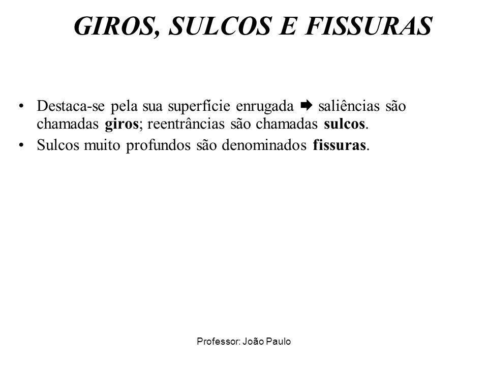 GIROS, SULCOS E FISSURAS