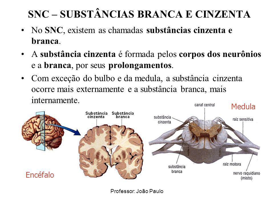 SNC – SUBSTÂNCIAS BRANCA E CINZENTA