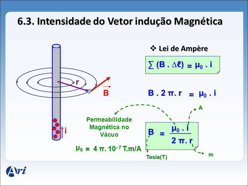 6.3. Intensidade do Vetor indução Magnética