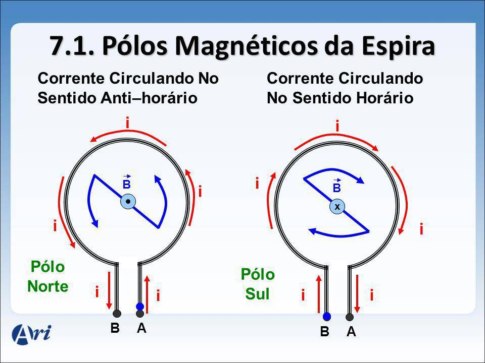7.1. Pólos Magnéticos da Espira