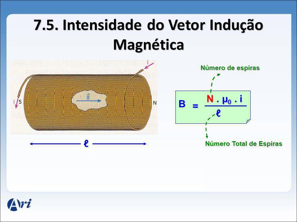 7.5. Intensidade do Vetor Indução Magnética
