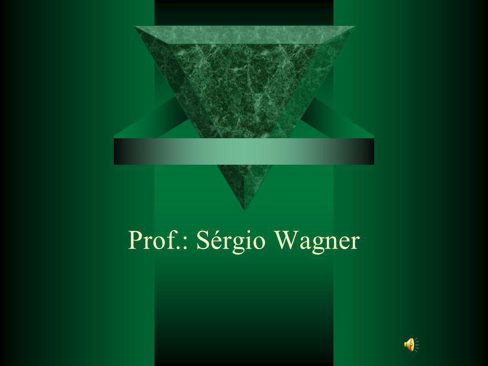 Prof.: Sérgio Wagner