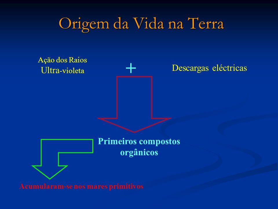 Primeiros compostos orgânicos