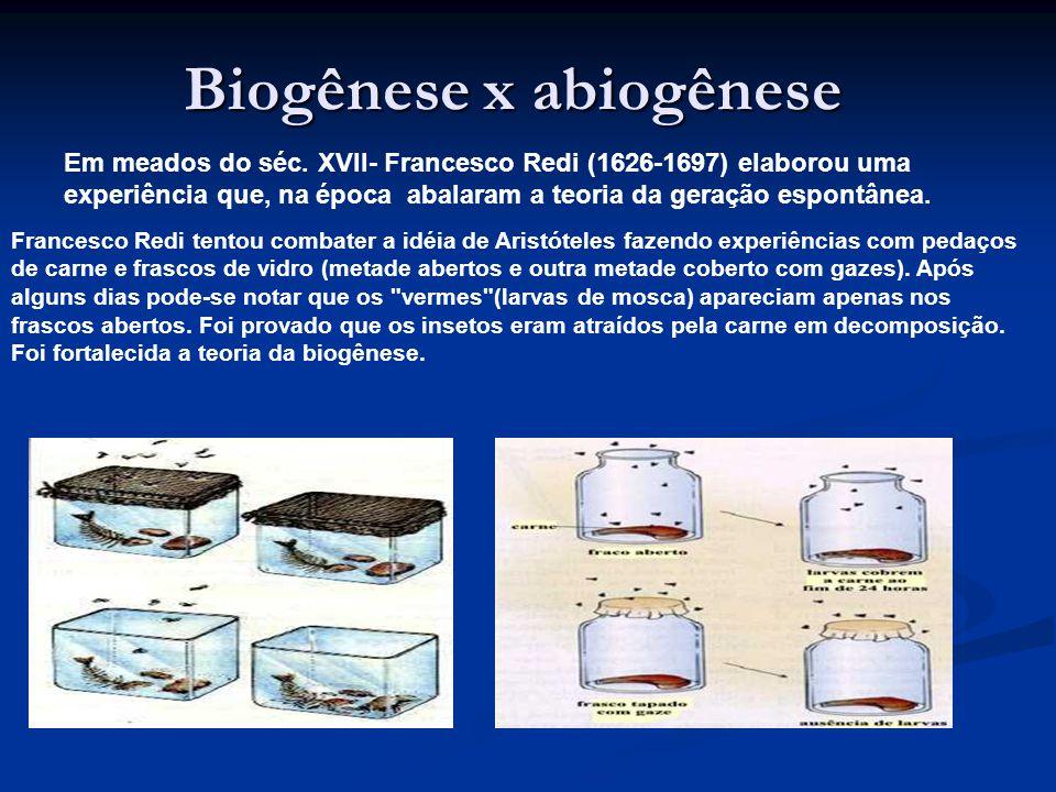 Biogênese x abiogênese