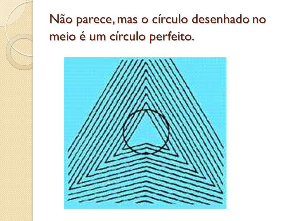 Não parece, mas o círculo desenhado no meio é um círculo perfeito.