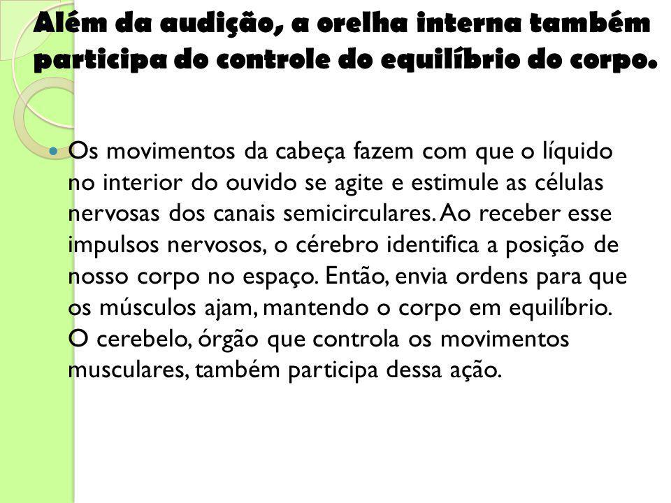 Além da audição, a orelha interna também participa do controle do equilíbrio do corpo.