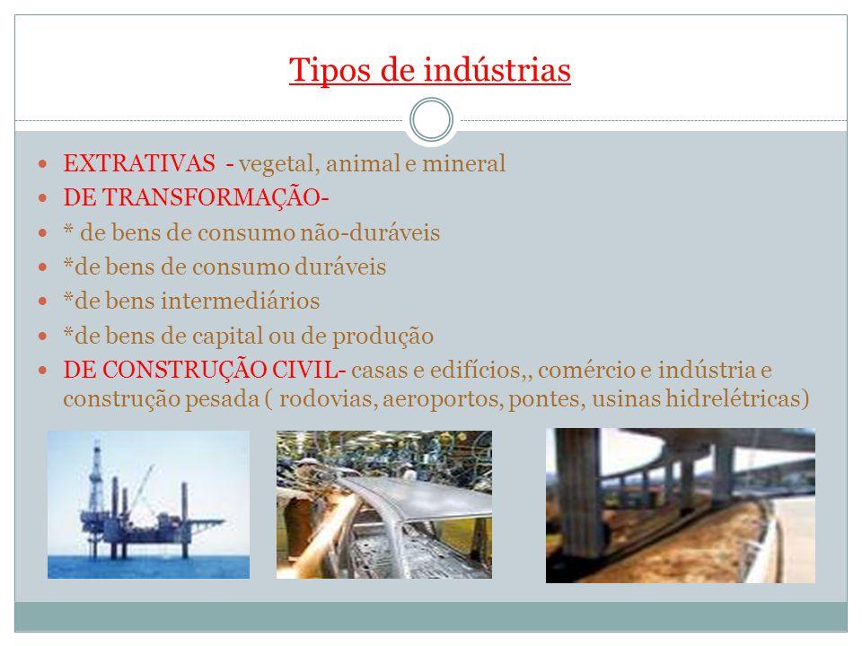 Tipos de indústrias EXTRATIVAS - vegetal, animal e mineral