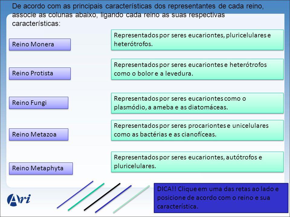 De acordo com as principais características dos representantes de cada reino, associe as colunas abaixo, ligando cada reino as suas respectivas características: