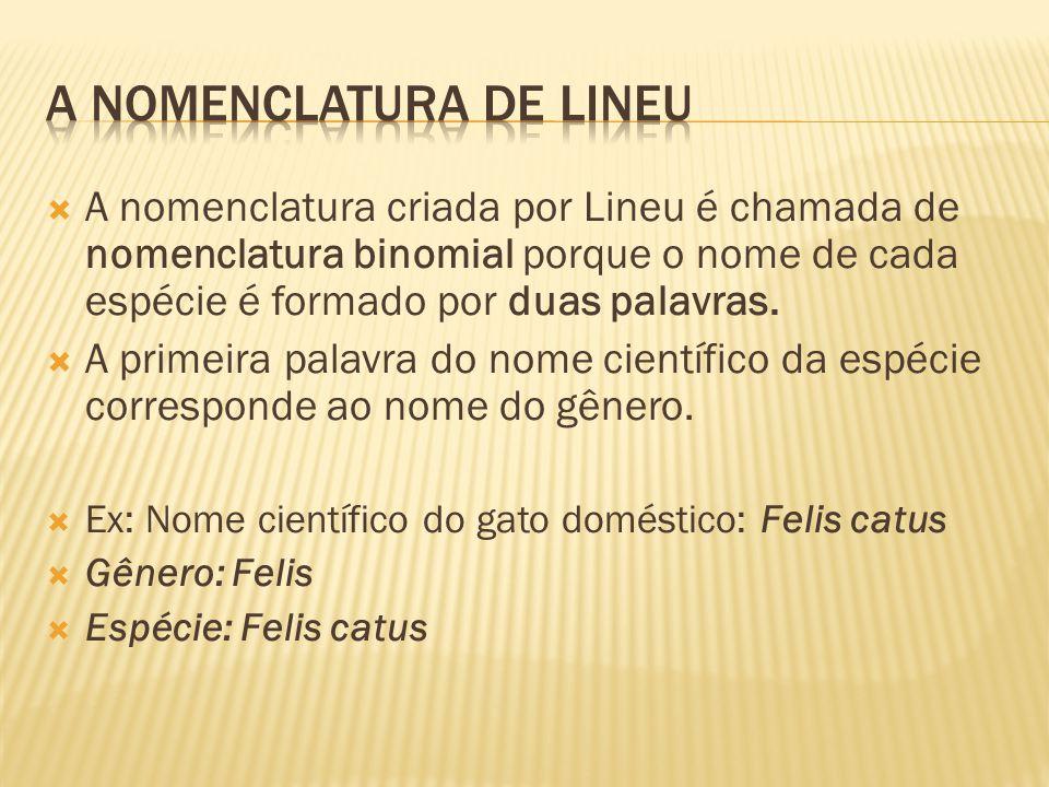 A nomenclatura de Lineu