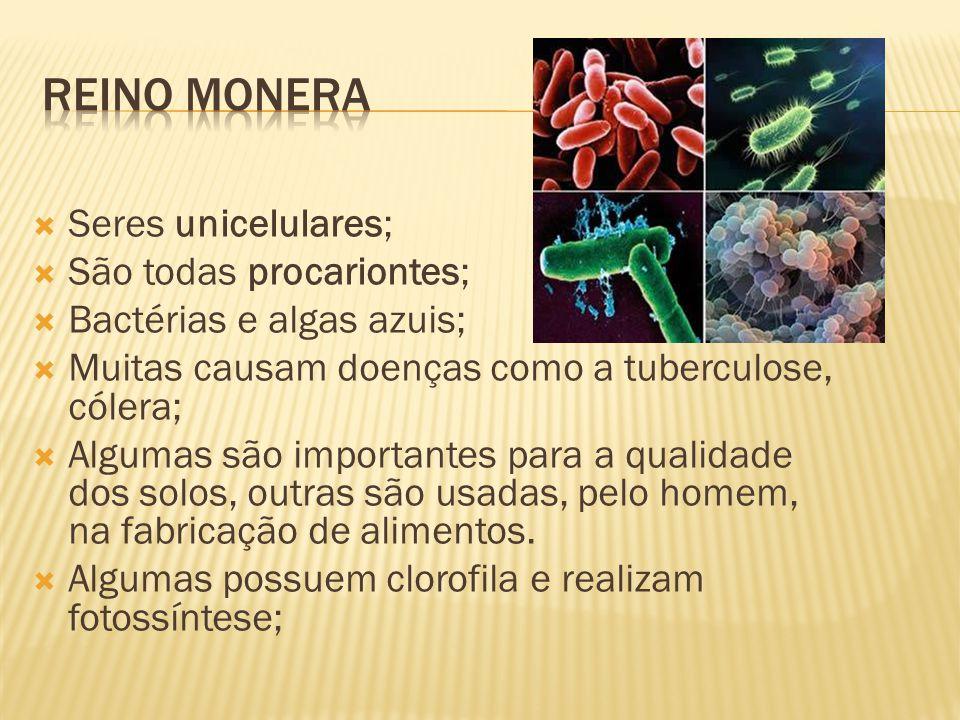 Reino monera Seres unicelulares; São todas procariontes;