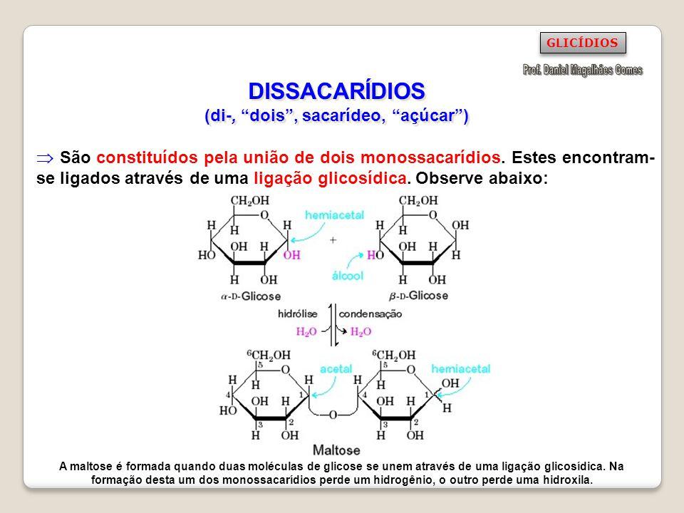 DISSACARÍDIOS (di-, dois , sacarídeo, açúcar )