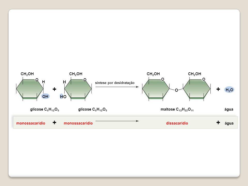 + + H HO O OH H2O CH2OH glicose C6H12O6 glicose C6H12O6