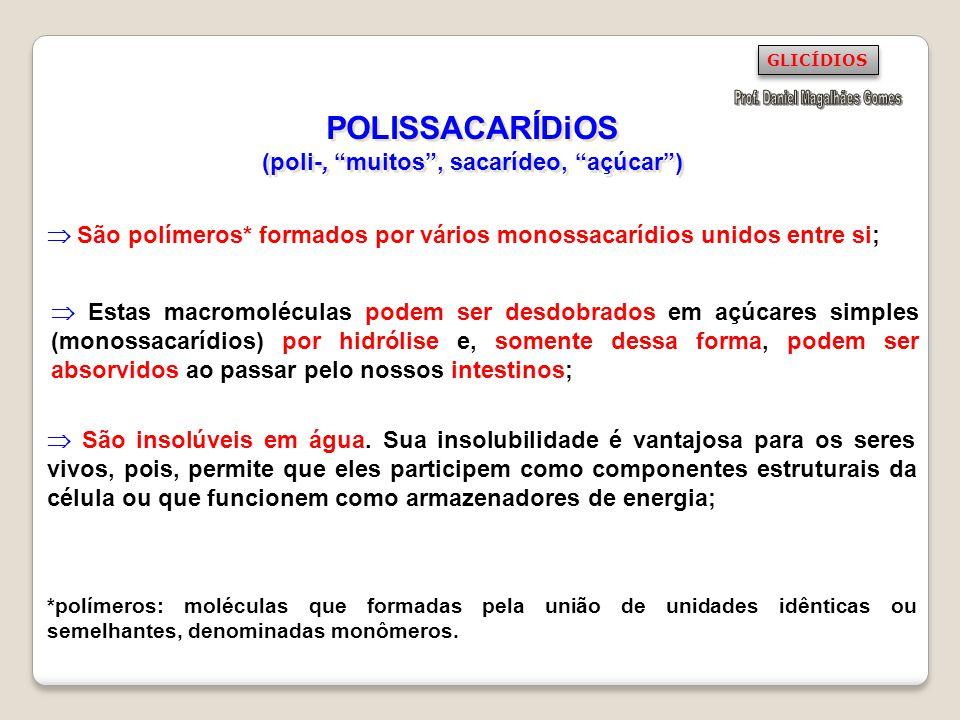 POLISSACARÍDiOS (poli-, muitos , sacarídeo, açúcar )