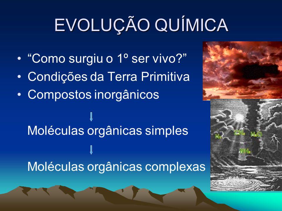 EVOLUÇÃO QUÍMICA Como surgiu o 1º ser vivo