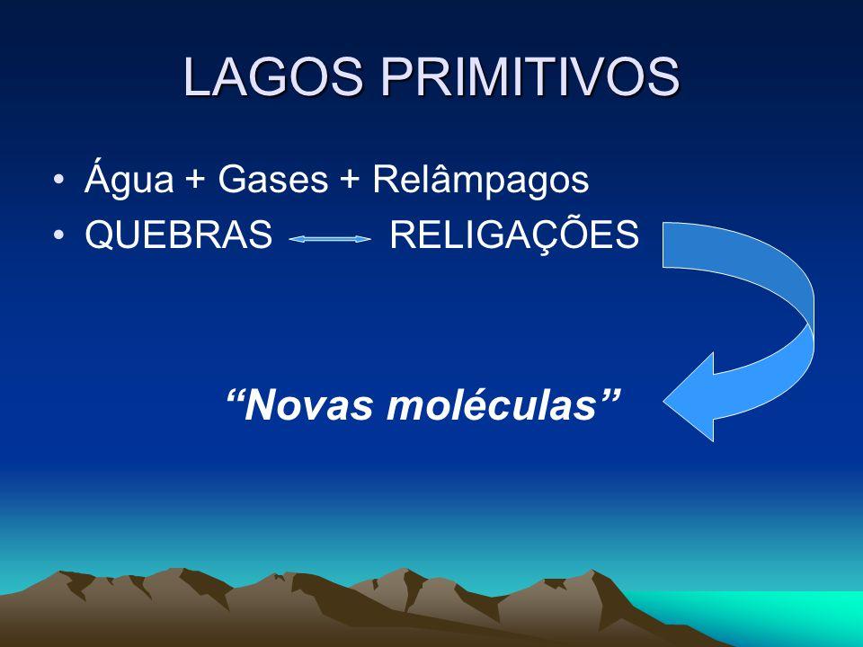 LAGOS PRIMITIVOS Água + Gases + Relâmpagos QUEBRAS RELIGAÇÕES