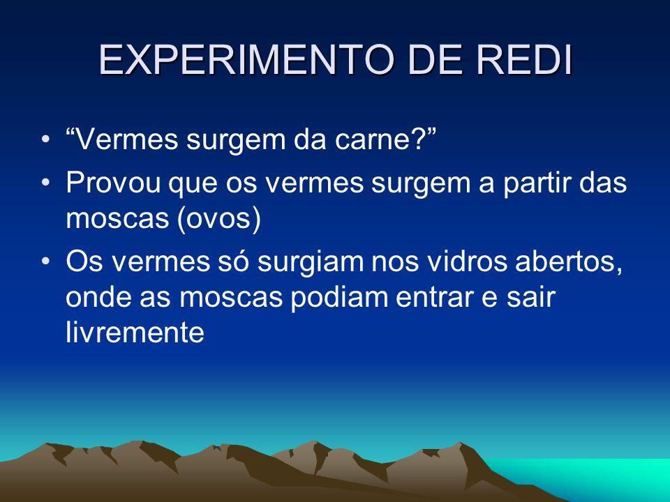 EXPERIMENTO DE REDI Vermes surgem da carne