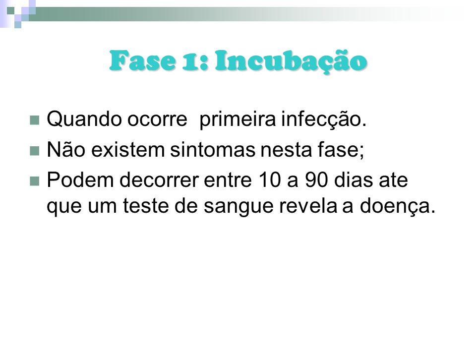 Fase 1: Incubação Quando ocorre primeira infecção.