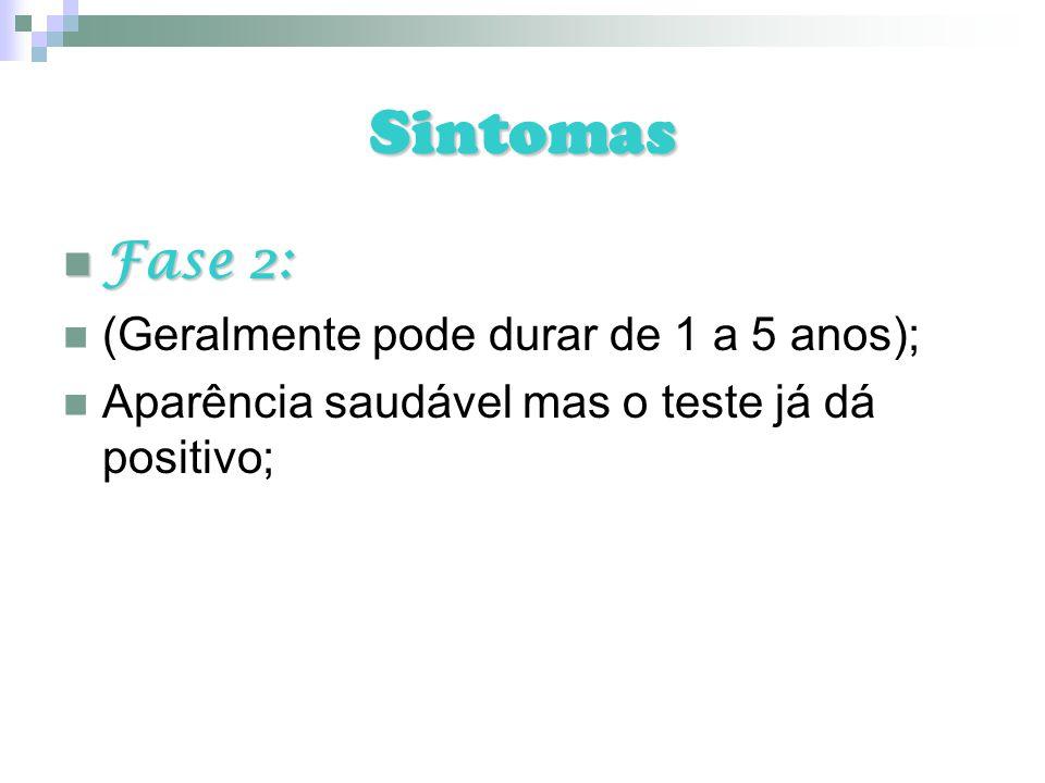 Sintomas Fase 2: (Geralmente pode durar de 1 a 5 anos);