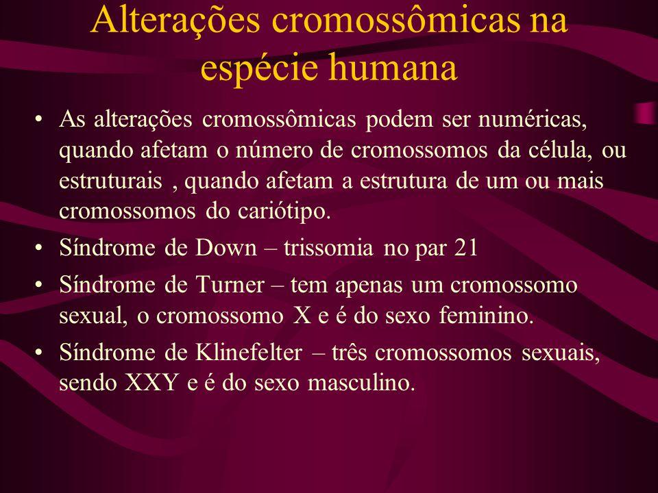 Alterações cromossômicas na espécie humana