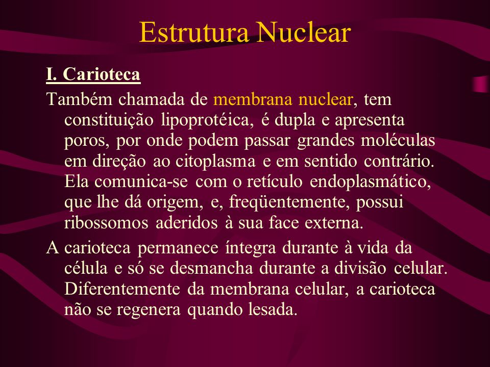 Estrutura Nuclear I. Carioteca