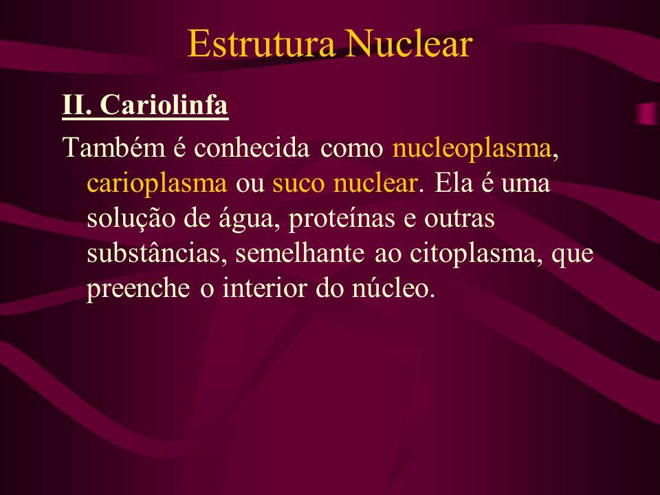 Estrutura Nuclear II. Cariolinfa