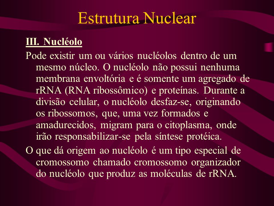 Estrutura Nuclear III. Nucléolo