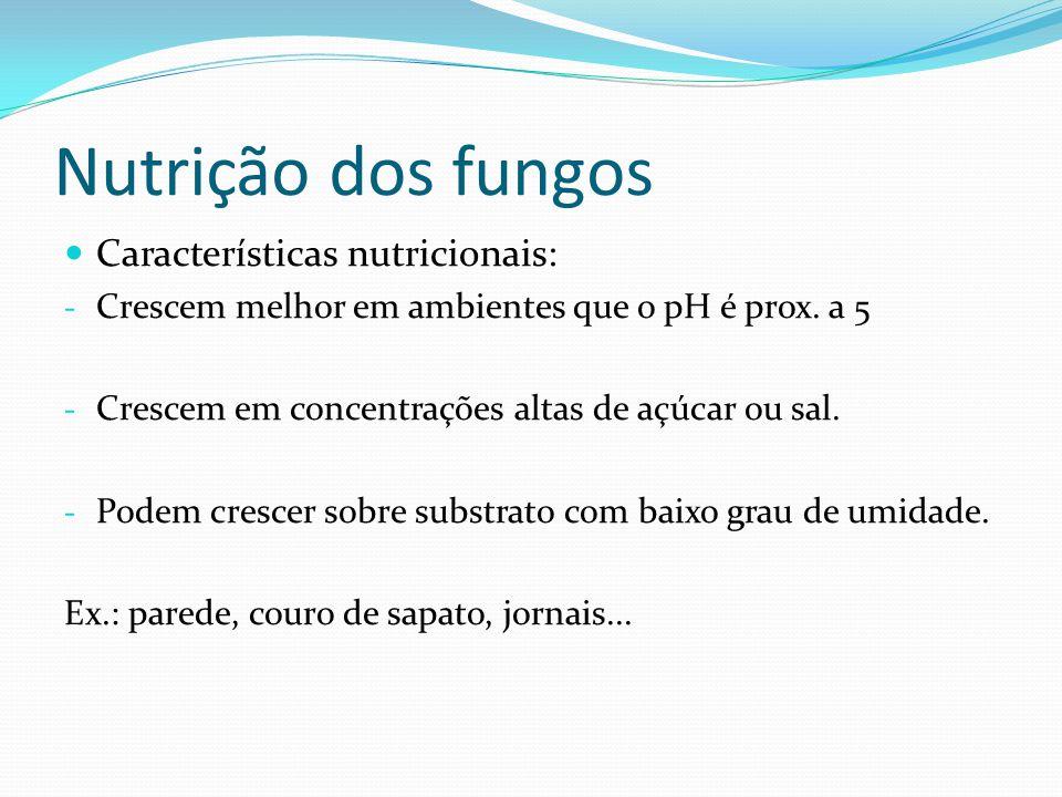 Nutrição dos fungos Características nutricionais: