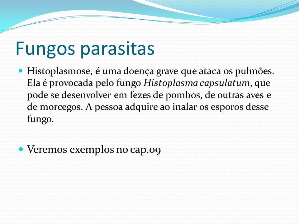 Fungos parasitas Veremos exemplos no cap.09