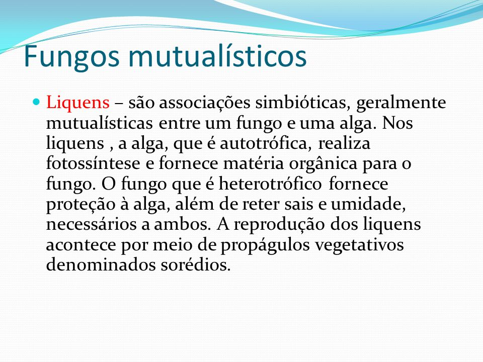 Fungos mutualísticos