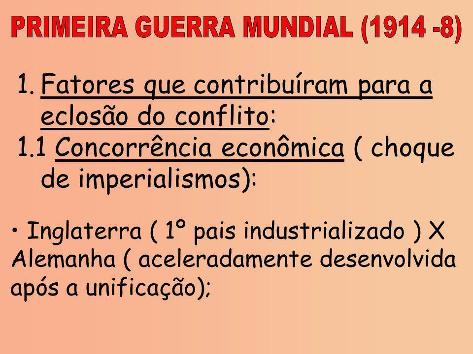 PRIMEIRA GUERRA MUNDIAL (1914 -8)