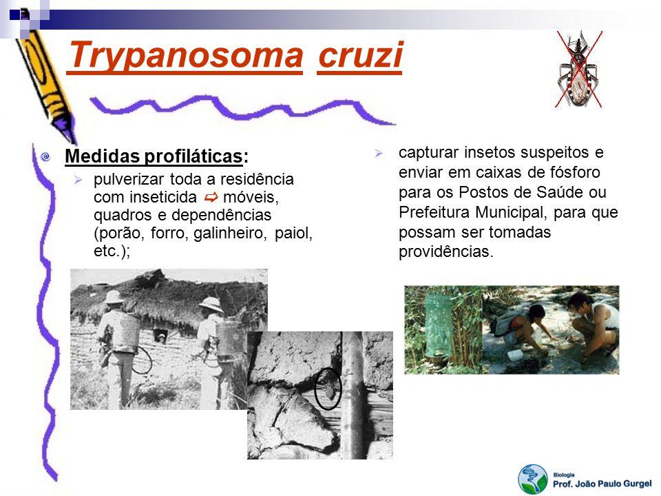 Trypanosoma cruzi Medidas profiláticas: