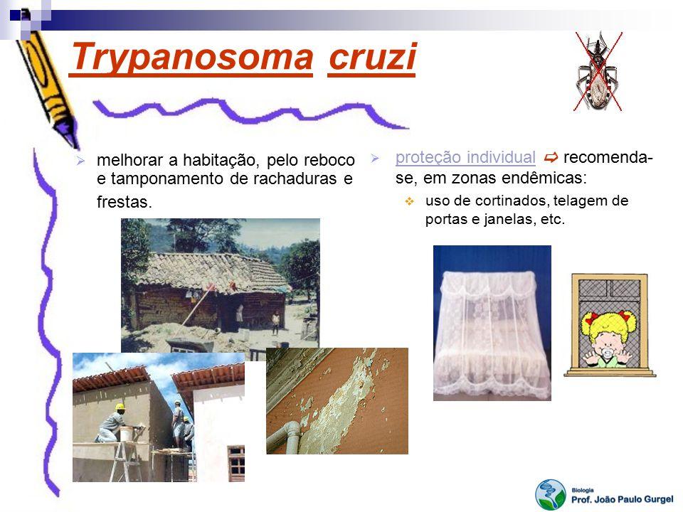 Trypanosoma cruzi proteção individual  recomenda-se, em zonas endêmicas: uso de cortinados, telagem de portas e janelas, etc.