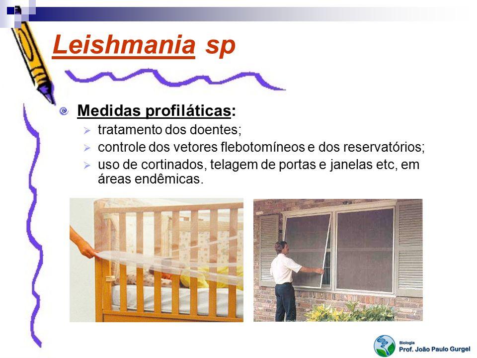 Leishmania sp Medidas profiláticas: tratamento dos doentes;