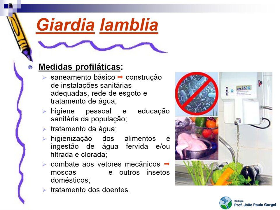 Giardia lamblia Medidas profiláticas: