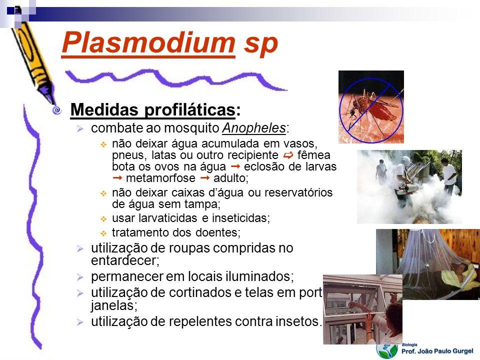 Plasmodium sp Medidas profiláticas: combate ao mosquito Anopheles: