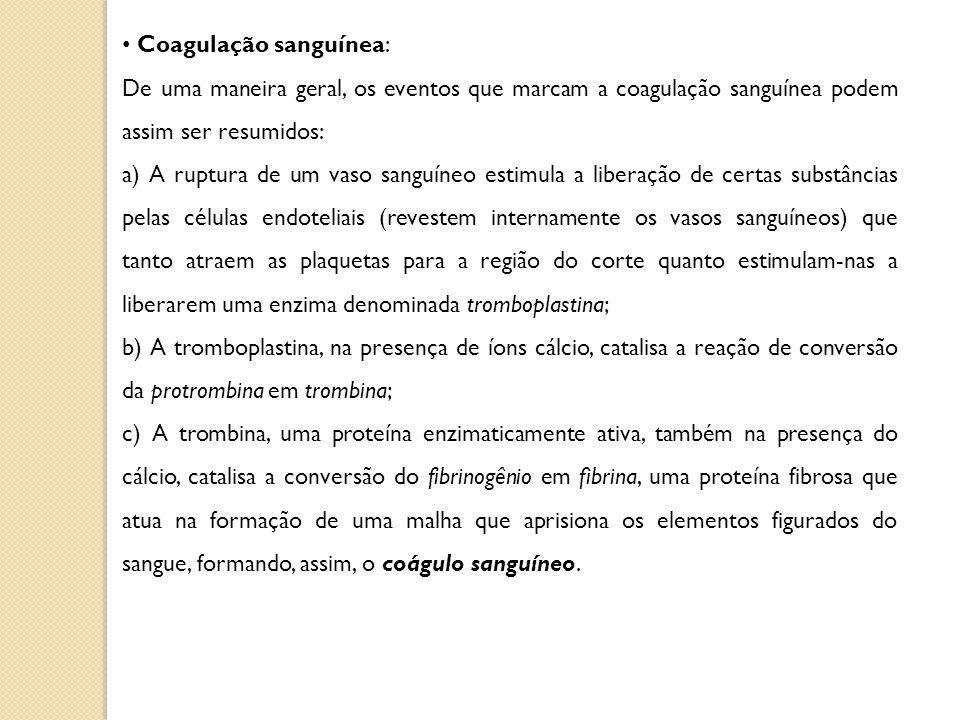 Coagulação sanguínea: