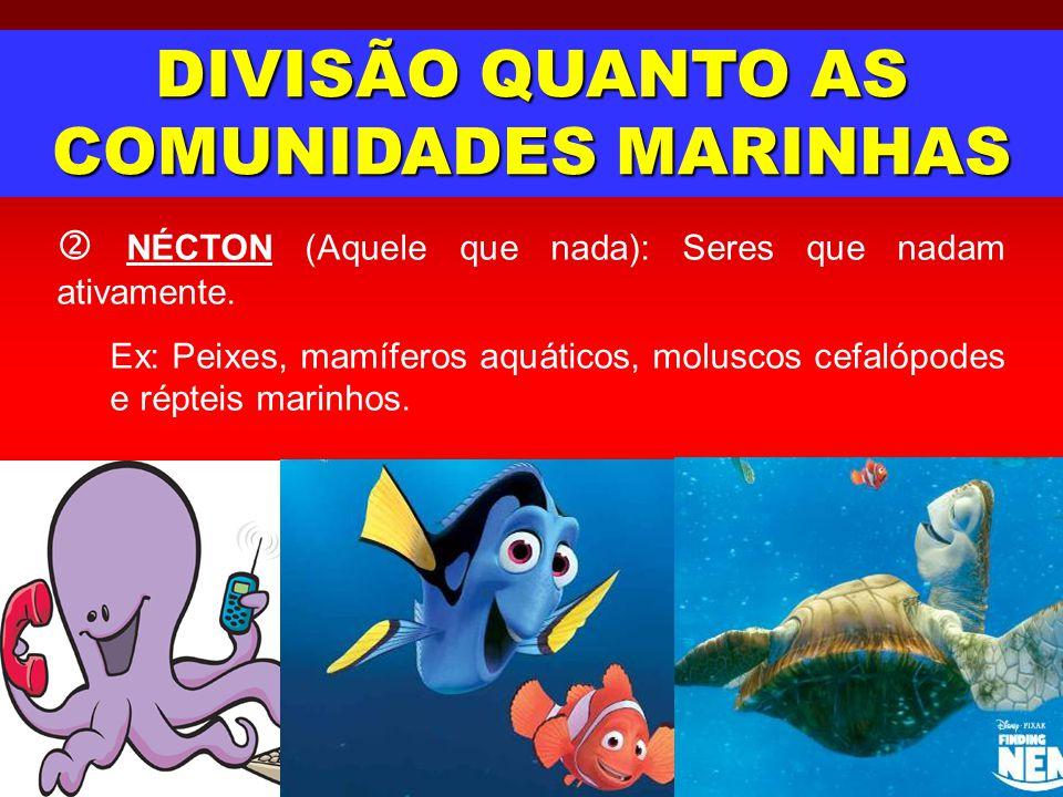 DIVISÃO QUANTO AS COMUNIDADES MARINHAS
