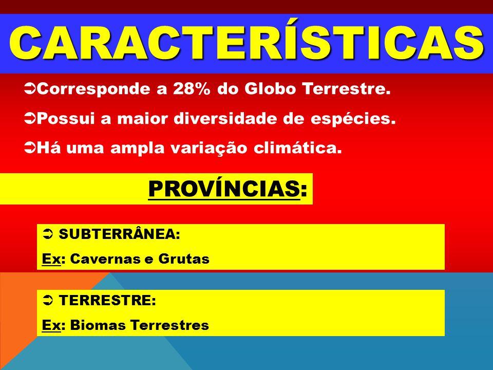 CARACTERÍSTICAS PROVÍNCIAS: Corresponde a 28% do Globo Terrestre.