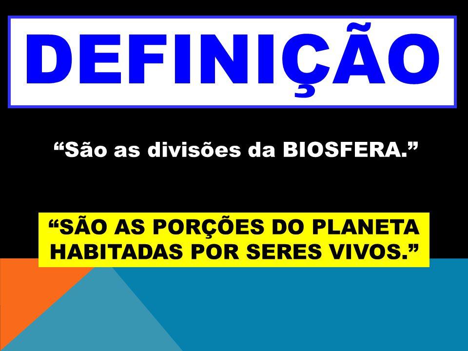 DEFINIÇÃO São as divisões da BIOSFERA.