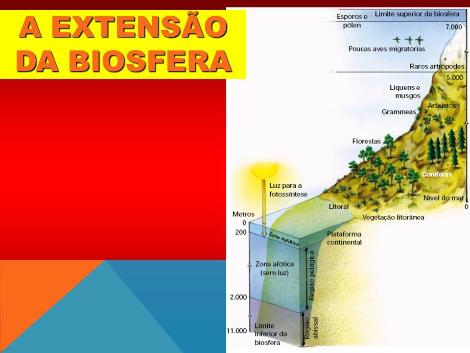A EXTENSÃO DA BIOSFERA