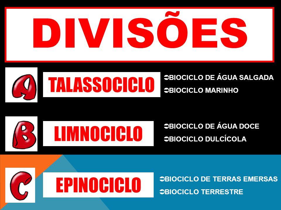 DIVISÕES TALASSOCICLO LIMNOCICLO EPINOCICLO BIOCICLO DE ÁGUA SALGADA