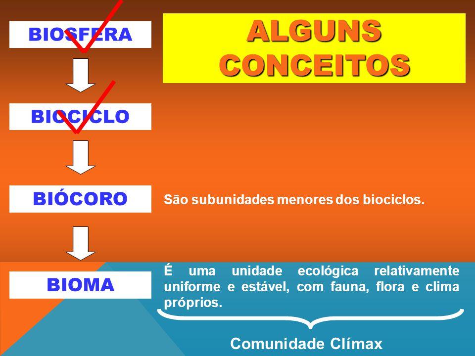 ALGUNS CONCEITOS BIOSFERA BIOCICLO BIÓCORO BIOMA Comunidade Clímax