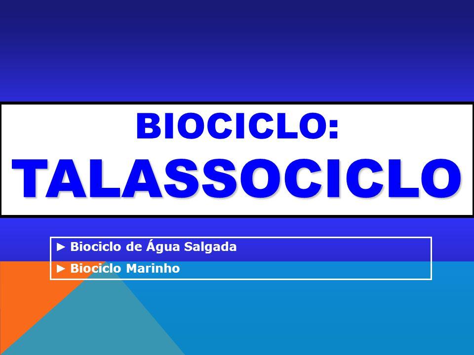 BIOCICLO: TALASSOCICLO