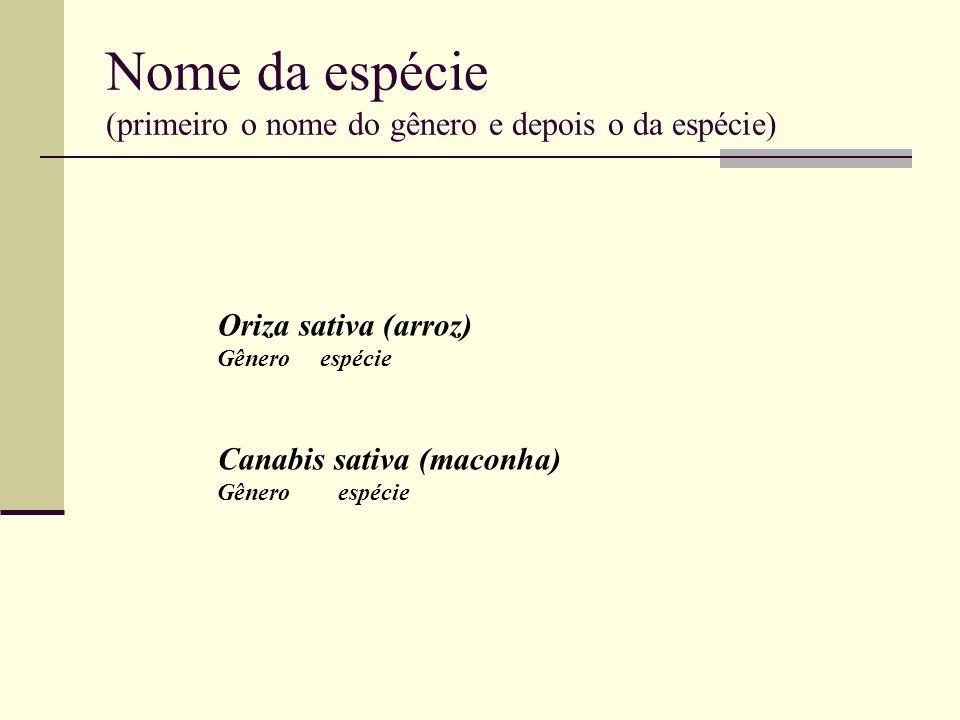 Nome da espécie (primeiro o nome do gênero e depois o da espécie)