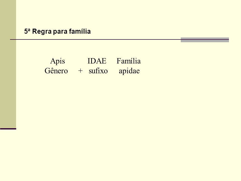 5ª Regra para família Apis IDAE Família Gênero + sufixo apidae
